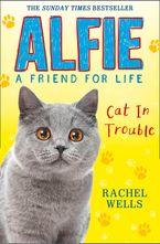 alfie-cat-in-trouble