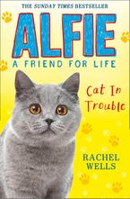 Alfie Cat In Trouble eBook  by Rachel Wells
