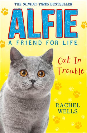 Alfie Cat In Trouble book image