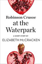 robinson-crusoe-at-the-waterpark-a-short-story-from-the-collection-reader-i-married-him