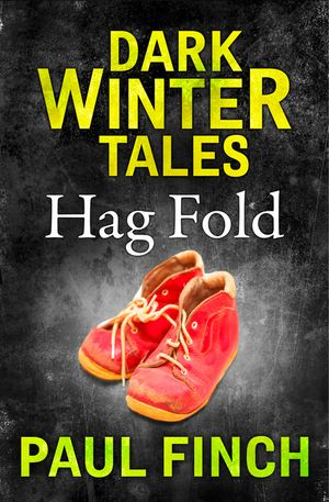 Hag Fold (Dark Winter Tales) book image