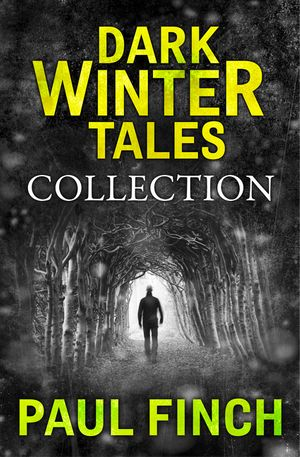 Dark Winter Tales: a collection of horror short stories (Dark Winter Tales) book image