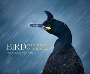Bird Photographer of the Year book image