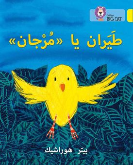 Fly, Murjan!: Level 3 (KG) (Collins Big Cat Arabic Reading Programme)