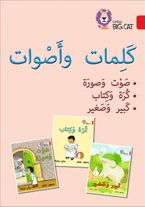 Words and Sounds Big Book: Level 2 (KG) (Collins Big Cat Arabic Reading Programme) Paperback  by Collins Big Cat