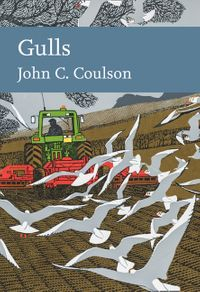 gulls-collins-new-naturalist-library