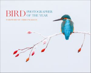 Bird Photographer of the Year: Collection 2 book image
