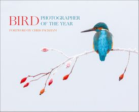 Bird Photographer of the Year: Collection 2
