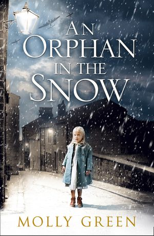 An Orphan in the Snow: The heart-warming saga you need to read this year book image