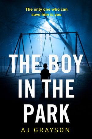 The Boy in the Park: A gripping psychological thriller with a shocking twist book image