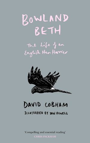 Bowland Beth: The Life of an English Hen Harrier book image
