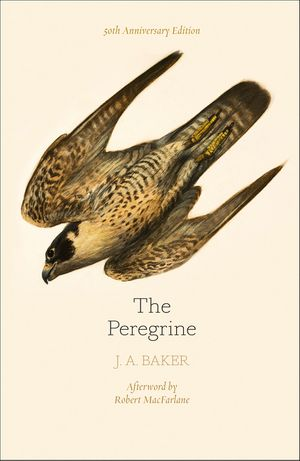 The Peregrine: 50th Anniversary Edition: Afterword by Robert Macfarlane book image