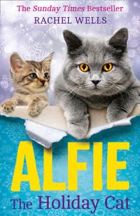 alfie-the-holiday-cat