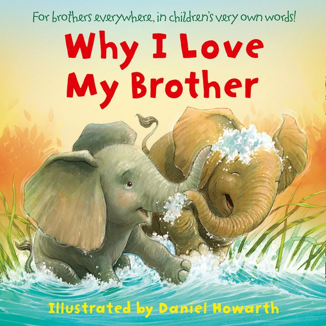 love my brother board book ebook