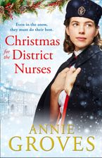 Christmas for the District Nurses (The District Nurse, Book 3) Paperback  by Annie Groves