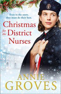 christmas-for-the-district-nurses-the-district-nurse-book-3