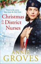 Christmas for the District Nurses (The District Nurse, Book 3)
