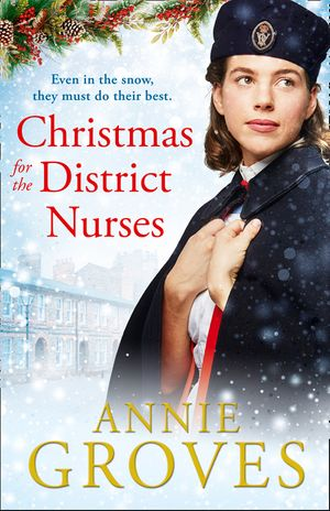 Christmas for the District Nurses (The District Nurse, Book 3) book image