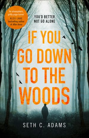 If You Go Down to the Woods: The most powerful and emotional debut thriller of 2018! book image