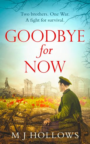 Goodbye for Now book image