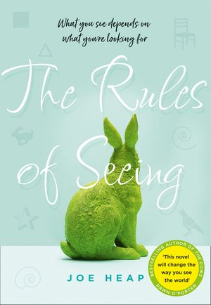 the-rules-of-seeing