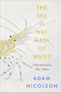 the-sea-is-not-made-of-water-life-between-the-tides