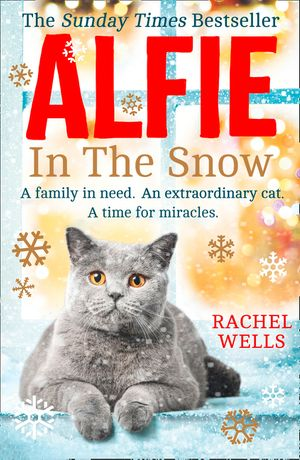 Alfie in the Snow book image
