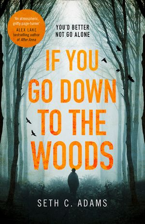 If You Go Down to the Woods: A powerful and gripping debut thriller which will send you on an emotional rollercoaster! book image