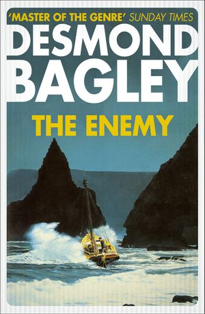 The Enemy book image