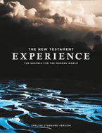 the-new-testament-experience-the-gospels-for-the-modern-world-esv