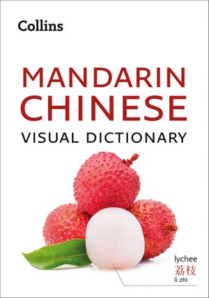 Collins Mandarin Chinese Visual Dictionary book image