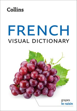 Collins French Visual Dictionary book image