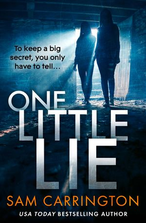 One Little Lie book image