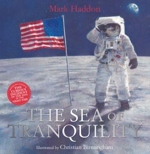 The Sea of Tranquility book image