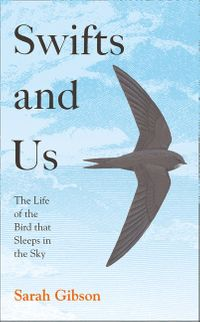 swifts-and-us-the-life-of-the-bird-that-sleeps-in-the-sky