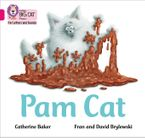 Collins Big Cat Phonics for Letters and Sounds – Pam Cat: Band 01B/Pink B