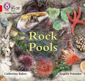 Collins Big Cat Phonics for Letters and Sounds – Rock Pools: Band 2B/Red B