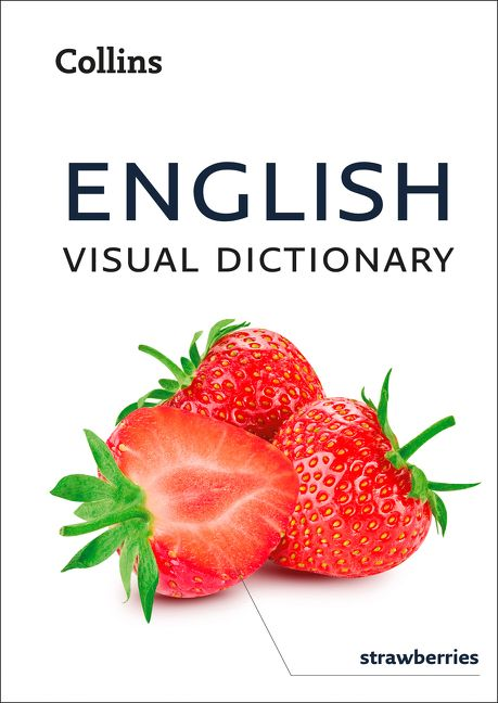 English Visual Dictionary A Photo Guide To Everyday Words And