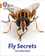 Collins Big Cat Phonics for Letters and Sounds – Fly Secrets: Band 06/Orange Paperback  by Clare Helen Welsh