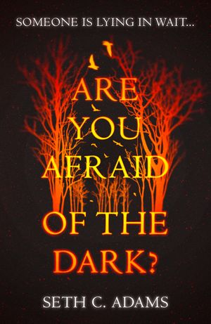 Are You Afraid of the Dark? book image