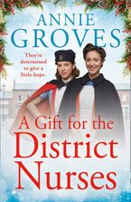 A Gift for the District Nurses (The District Nurses, Book 4)