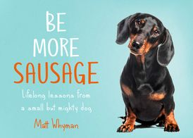 Be More Sausage: How the humble Dachshund can teach us to be more human