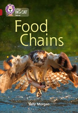 Food Chains: Band 14/Ruby (Collins Big Cat)