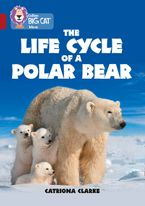 The Life Cycle of a Polar Bear: Band 14/Ruby (Collins Big Cat)