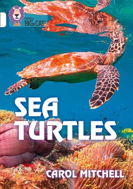 Sea Turtles: Band 10/White (Collins Big Cat)