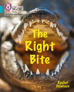 Collins Big Cat Phonics for Letters and Sounds – The Right Bite: Band 07/Turquoise