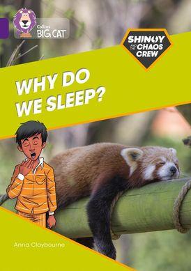 Shinoy and the Chaos Crew: Why do we sleep?: Band 08/Purple (Collins Big Cat)