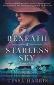 beneath-a-starless-sky