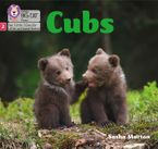 Big Cat Phonics for Little Wandle Letters and Sounds Revised – Cubs: Phase 2