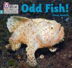 Big Cat Phonics for Little Wandle Letters and Sounds Revised – Odd Fish!: Phase 3